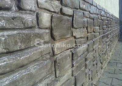Platteville Limestone (13)