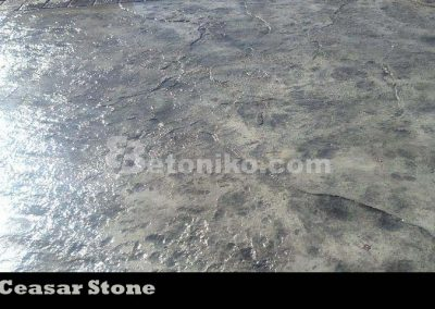 CEASAR STONE (44)