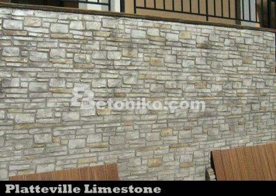 Platteville Limestone (11)
